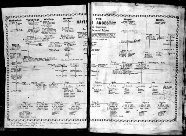Hayes Family Tree - digitizing collections